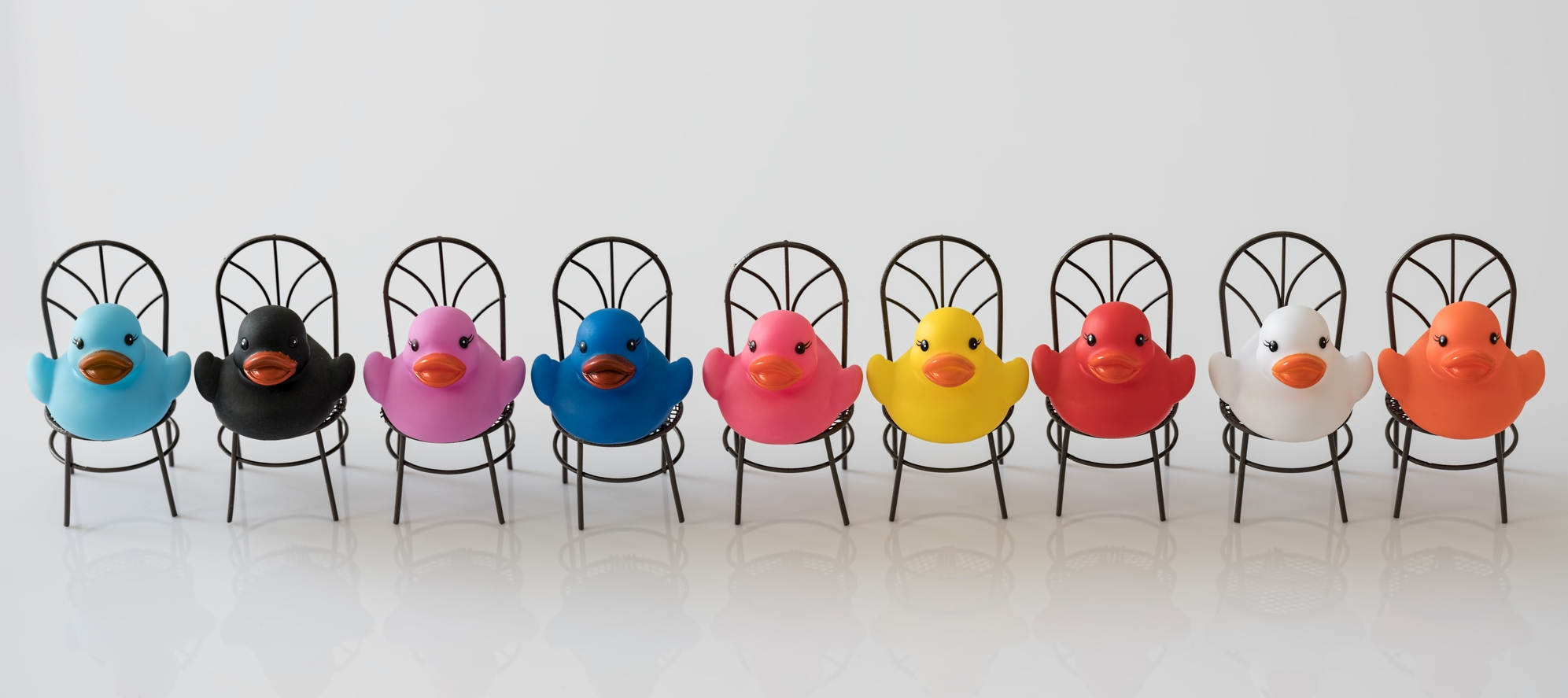 Getting your ducks in a row - team building